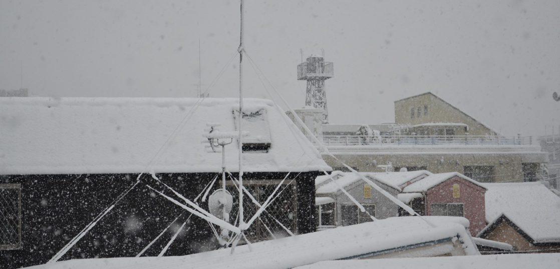1月の降雪