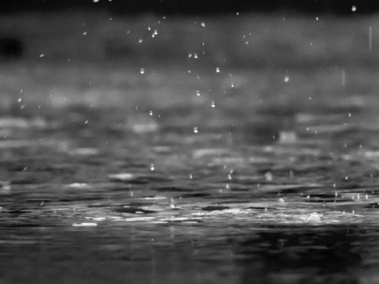 雨のお天気