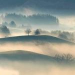 濃霧の12月
