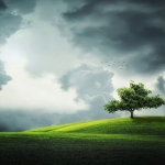 不安定な自然環境